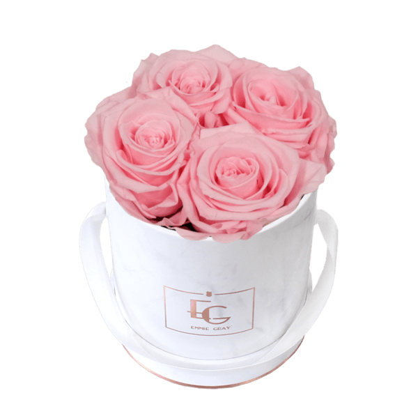 Classic Infinity Rosebox   Bridal Pink   XS