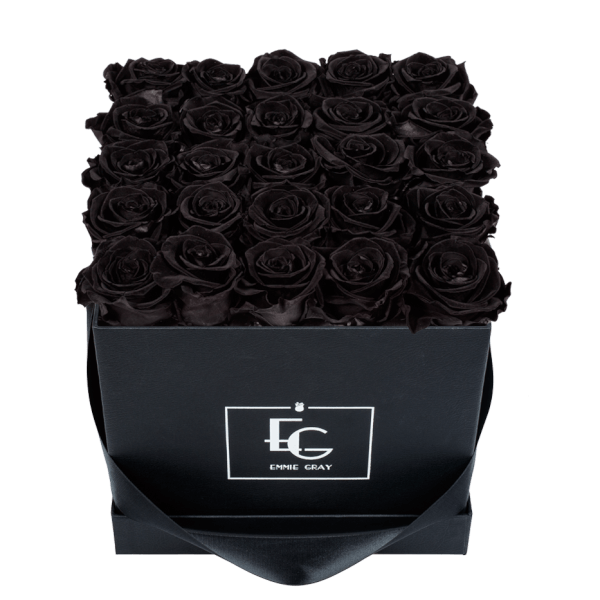 CLASSIC INFINITY ROSEBOX | BLACK BEAUTY | M
