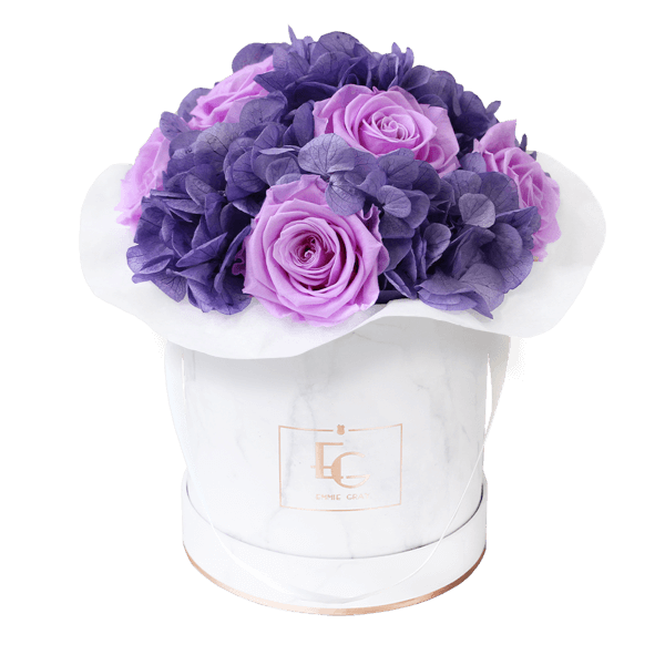 Splendid Hydrangea Mix Infinity Rosebox   Baby Lilli & Violet Vain   S