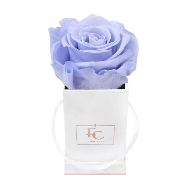 Classic Infinity Rosebox | Cool Lavender | XXS