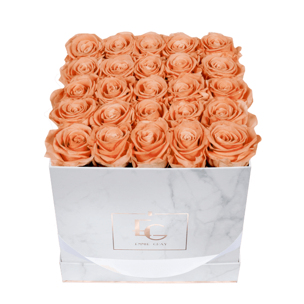 Classic Infinity Rosebox | Perfect Peach | M