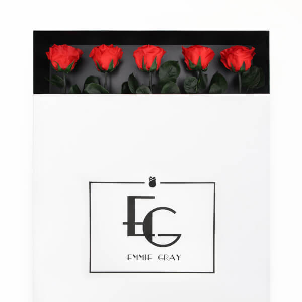 LONG STEM INFINITY ROSE | Vibrant RED | 5 Rosen