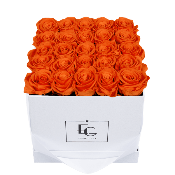 CLASSIC INFINITY ROSEBOX | ORANGE FLAME | M