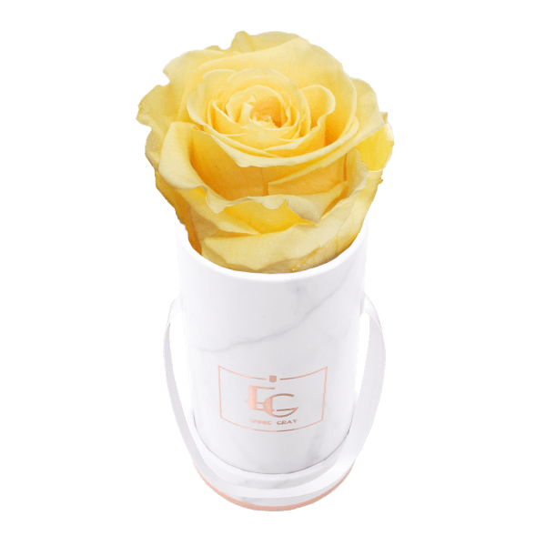Classic Infinity Rosebox | Perfect Peach | XXS