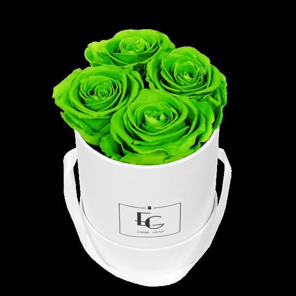CLASSIC INFINITY ROSEBOX | GREEN GLOW | XS