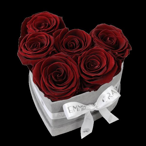 Classic Infinity Rosebox | Burgundy | S