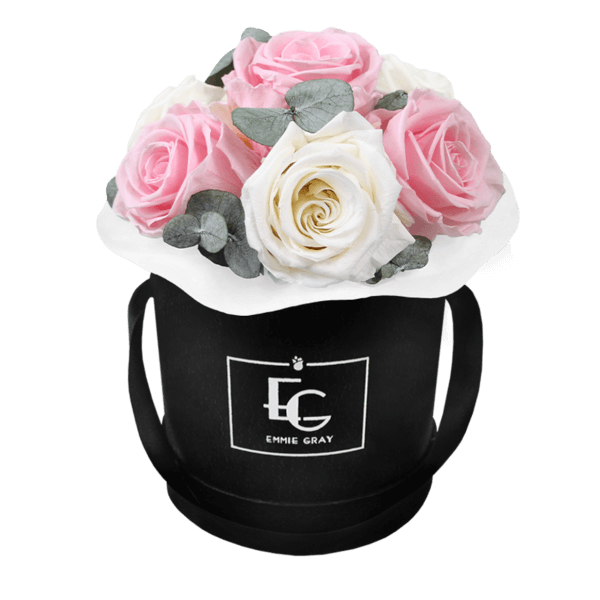 Splendid Eucalyptus Infinity Rosebox   Pure White & Bridal Pink   XS