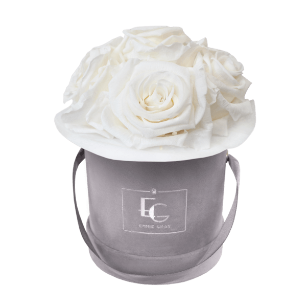 Splendid Infinity Rosebox   Pure White   XS