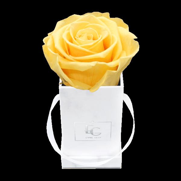Classic Infinity Rosebox | Perfect Peach | XXS
