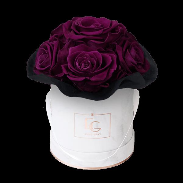 Splendid Infinity Rosebox | Velvet Plum | XS