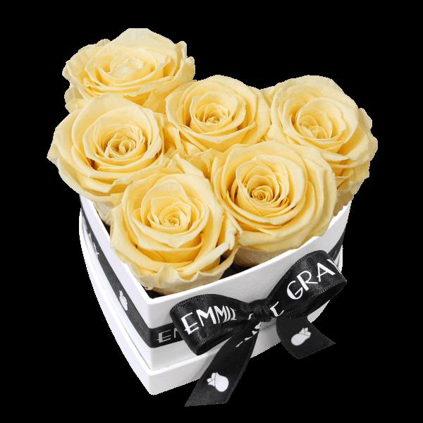 Classic Infinity Rosebox   Champagne   S