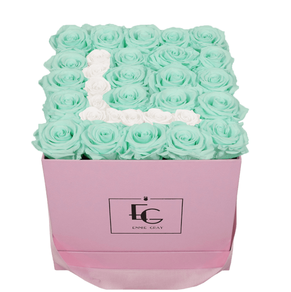 LETTER INFINITY ROSEBOX | MINTY GREEN & PURE WHITE | M