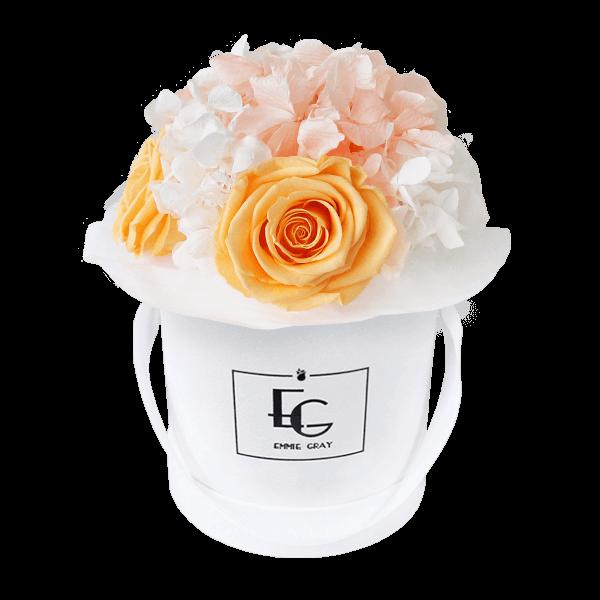 Splendid Hydrangea Mix Infinity Rosebox   Perfect Peach & Pure White   XS