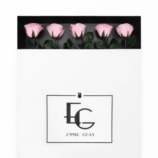 LONG STEM INFINITY ROSES | Bridal Pink | 5 Rosen