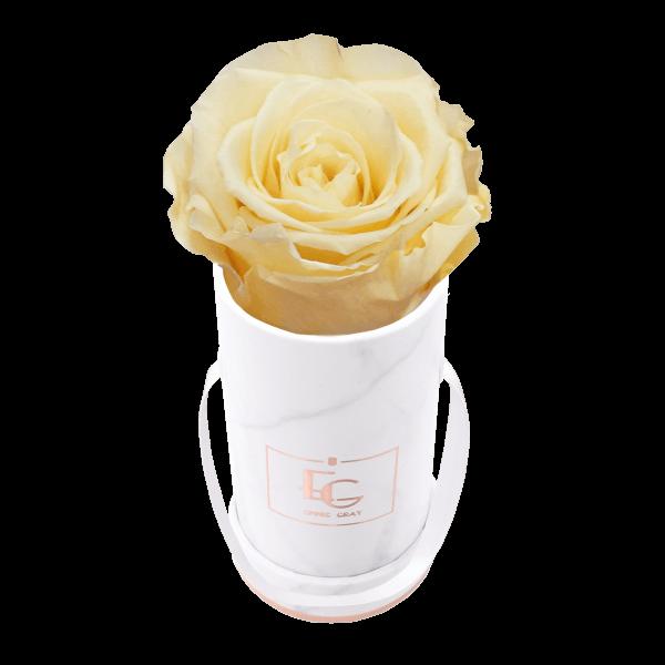 Classic Infinity Rosebox   Champagne   XXS