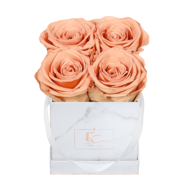 Classic Infinity Rosebox | Perfect Peach | XS